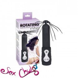 Rotating Whip