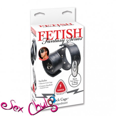 Fetish Fantasy Series Shock Therapy Cock Cage PD3723-03